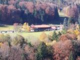 (Herbstfoto 3)